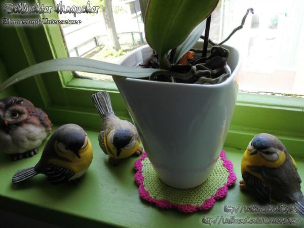 Schlichter Hingucker - Blumentopfuntersetzer